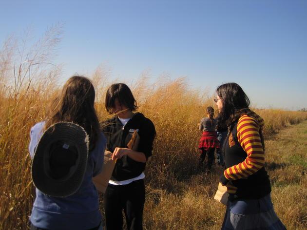 Prairie Rehabilitation at Riverlands